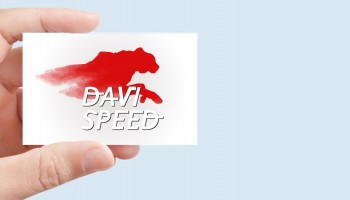Idee E Soluzioni Realizza Logotipo Pilota DaviSpeed