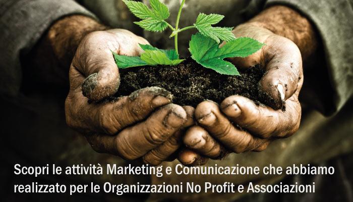 Attivita Marketing E Comunicazione Settori Organizzazioni No Profit E Associazioni