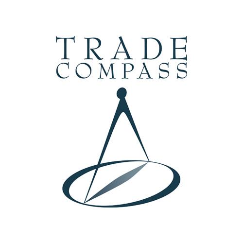 Idee-e-Soluzioni-Rivisitazione-Logo-Trade-Compass-Verticale