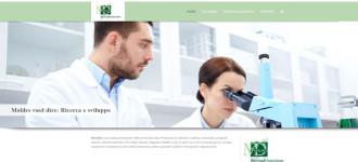 Idee-e-Soluzioni-realizza-il-sito-web-di-Moldes