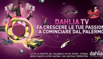 Modelli 3D Per Campagna Pubblicitaria Dahlia