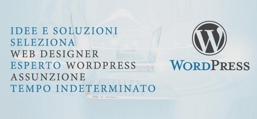 Ricerca Grafico WebDesigner 1170×400