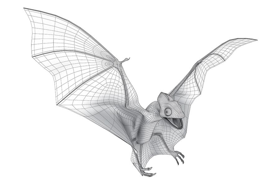 Wireframe modello 3D Pipistrello realizzato da Idee e Soluzioni